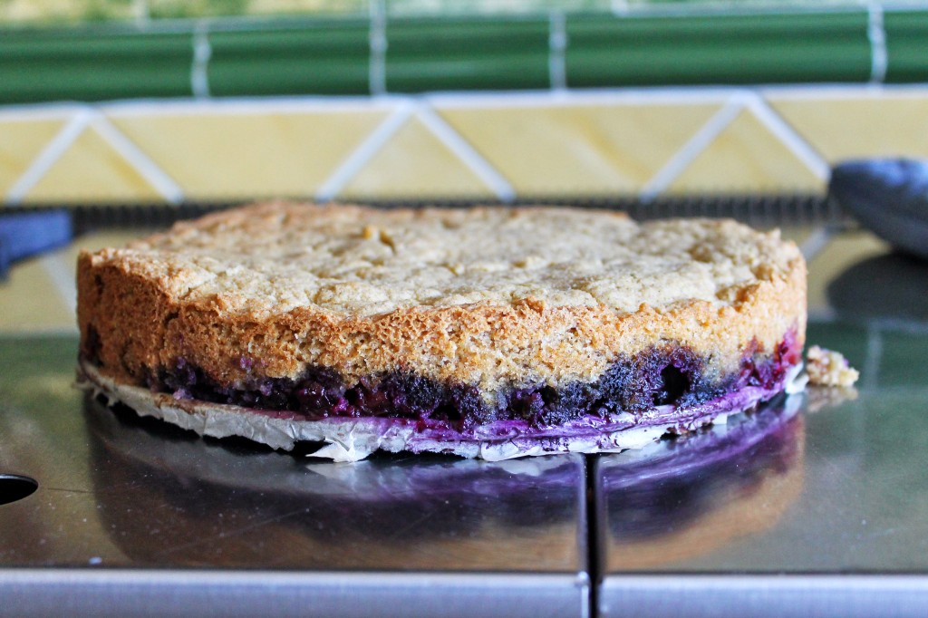 Gluten Free Cornmeal cake