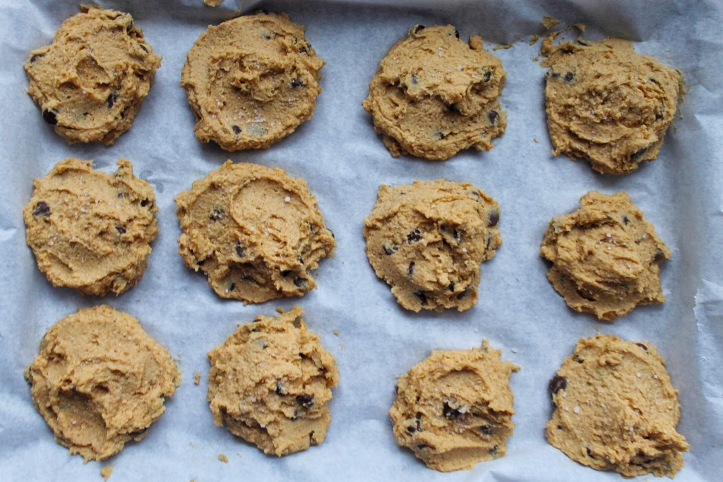 Salted Chocolate Chip Chickpea Cookies